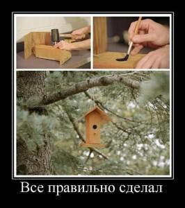 "Демотиватор ""Скворечник"""
